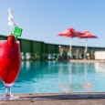 This week's travel feature showcases the luxurious AHA Gateway Hotel offering contemporary guestrooms with warm African hospitality. The Socialite spent a few days there to check it out… Every holiday […]